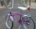 bi66sting3violet20