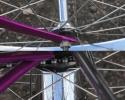 bi66sting3violet14