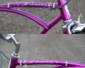 bi66sting3violet17