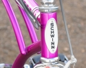 bi66sting3violet2