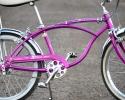 bi66sting3violet4