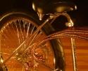 goldbrearwheel2