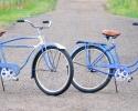 bischblu4950bapr1